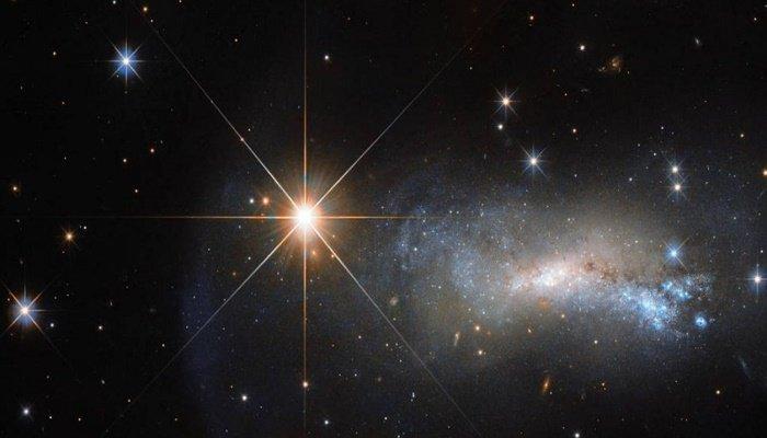 Mi paseo por las estrellas: Un posible futuro
